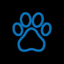 produits pour animaux animation commerciale